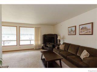 Photo 5: 489 Daer Boulevard in Winnipeg: Westwood / Crestview Residential for sale (West Winnipeg)  : MLS®# 1609886