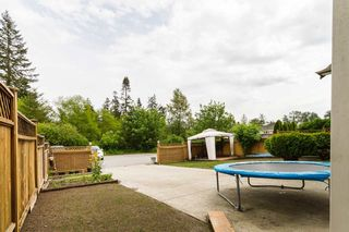 Photo 14: 10964 240 Street in Maple Ridge: Cottonwood MR House for sale : MLS®# R2072299
