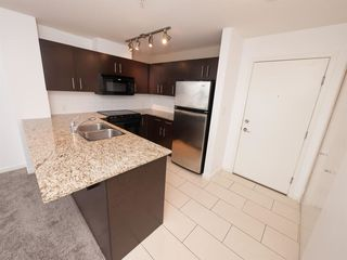 "Photo 3: 312 11665 HANEY Bypass in Maple Ridge: West Central Condo for sale in ""HANEY'S LANDING"" : MLS®# R2082167"
