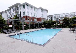 Photo 15: 418 9388 MCKIM Way in Richmond: West Cambie Condo for sale : MLS®# R2191355