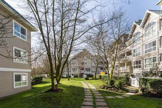Photo 11: 323 5900 DOVER Crescent in Richmond: Riverdale RI Condo for sale : MLS®# R2193226