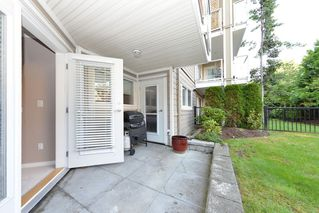 Photo 1: 105 22255 122ND AVENUE: Condo for sale : MLS®# V1118586