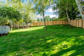 "Photo 20: 4724 206A Street in Langley: Langley City House for sale in ""City Park"" : MLS®# R2204259"