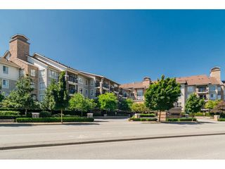 Photo 1: 424 8915 202 Street in Langley: Walnut Grove Condo for sale : MLS®# R2215824