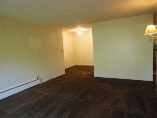 "Photo 5: 301 150 E 5 Street in North Vancouver: Lower Lonsdale Condo for sale in ""Normandy House"" : MLS®# R2265748"