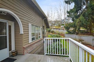 """Photo 17: 33 21848 50 Avenue in Langley: Murrayville Townhouse for sale in """"Cedar Crest"""" : MLS®# R2282232"""