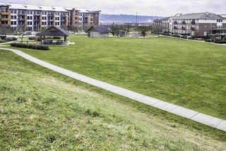 """Photo 19: 103 250 SALTER Street in New Westminster: Queensborough Condo for sale in """"Paddlers Landing"""" : MLS®# R2287298"""