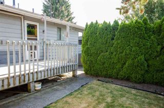 Photo 14: 5423 47 Avenue in Delta: Delta Manor House for sale (Ladner)  : MLS®# R2288023