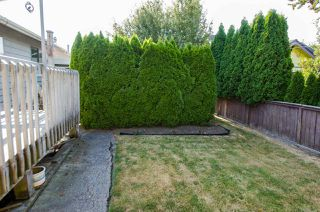 Photo 13: 5423 47 Avenue in Delta: Delta Manor House for sale (Ladner)  : MLS®# R2288023
