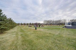 Photo 4: 53522 RGE RD 272: Rural Parkland County House for sale : MLS®# E4155828