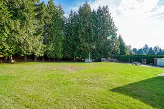Photo 15: 3342 LEALAND Court in Burnaby: Government Road House for sale (Burnaby North)  : MLS®# R2372772