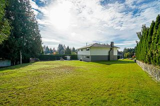 Photo 13: 3342 LEALAND Court in Burnaby: Government Road House for sale (Burnaby North)  : MLS®# R2372772