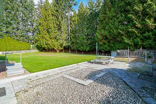 Photo 14: 3342 LEALAND Court in Burnaby: Government Road House for sale (Burnaby North)  : MLS®# R2372772