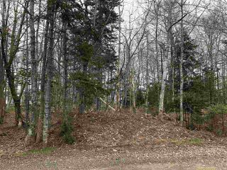 Photo 3: LOT Levi White Road in Kings Head: 108-Rural Pictou County Vacant Land for sale (Northern Region)  : MLS®# 201912086