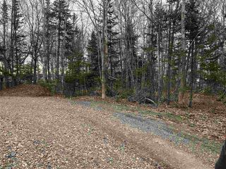 Photo 7: LOT Levi White Road in Kings Head: 108-Rural Pictou County Vacant Land for sale (Northern Region)  : MLS®# 201912086