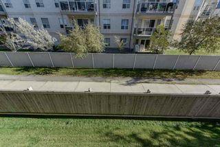 Photo 28: 232 17447 98A Avenue in Edmonton: Zone 20 Condo for sale : MLS®# E4182547