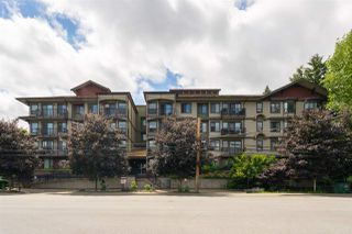 Photo 22: 209 19830 56 Avenue in Langley: Langley City Condo for sale : MLS®# R2470157
