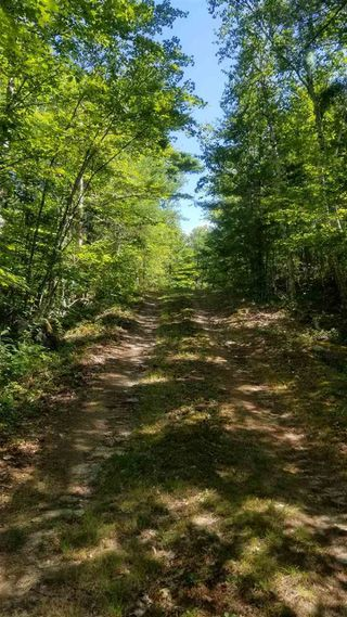 Photo 10: 61 Twin Lake Road in Maitland Bridge: 400-Annapolis County Vacant Land for sale (Annapolis Valley)  : MLS®# 202018903