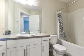Photo 14: 21079 79A Avenue in Langley: Willoughby Heights Condo for sale : MLS®# R2509091