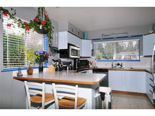 Photo 4: 21643 EXETER AV in Maple Ridge: West Central House for sale : MLS®# V1001182