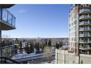 Photo 15: 303 1718 14 Avenue NW in Calgary: Briar Hill Condo for sale : MLS®# C3649213