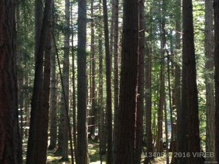 Photo 13: PCL A Main Rd in LASQUETI ISLAND: Isl Lasqueti Island Land for sale (Islands)  : MLS®# 739496