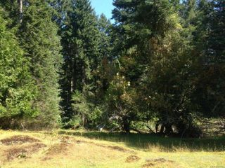 Photo 7: PCL A Main Rd in LASQUETI ISLAND: Isl Lasqueti Island Land for sale (Islands)  : MLS®# 739496