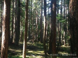 Photo 16: PCL A Main Rd in LASQUETI ISLAND: Isl Lasqueti Island Land for sale (Islands)  : MLS®# 739496