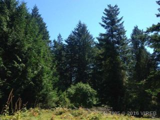 Photo 20: PCL A Main Rd in LASQUETI ISLAND: Isl Lasqueti Island Land for sale (Islands)  : MLS®# 739496