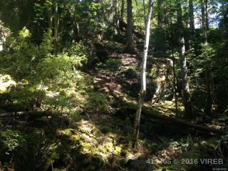 Photo 19: PCL A Main Rd in LASQUETI ISLAND: Isl Lasqueti Island Land for sale (Islands)  : MLS®# 739496