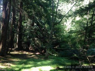 Photo 15: PCL A Main Rd in LASQUETI ISLAND: Isl Lasqueti Island Land for sale (Islands)  : MLS®# 739496