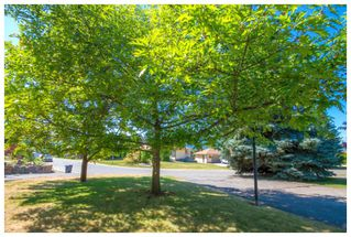Photo 4: 1650 Southeast 15 Street in Salmon Arm: Hillcrest House for sale (SE Salmon Arm)  : MLS®# 10139417
