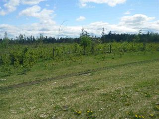 Photo 29: 1116 TWP RD 652: Rural Lesser Slave River M.D. House for sale : MLS®# E4084608