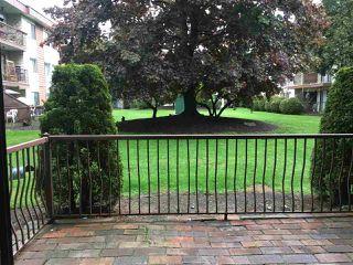 Photo 1: 205 1909 SALTON ROAD in Abbotsford: Central Abbotsford Condo for sale : MLS®# R2168048