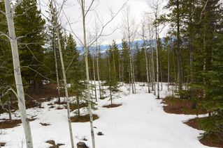Photo 40: 2842 Ptarmigan Road | Private Paradise Smithers
