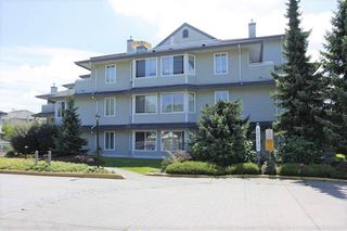 "Main Photo: 209 12130 80 Avenue in Surrey: West Newton Condo for sale in ""La Costa Green"" : MLS®# R2282731"