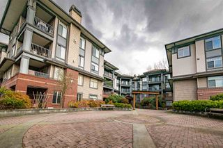 Photo 14: 313 12020 207A Street in Maple Ridge: Northwest Maple Ridge Condo for sale : MLS®# R2331247