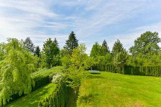"Photo 17: 11321 241A Street in Maple Ridge: Cottonwood MR House for sale in ""SEIGEL CREEK ESTATES"" : MLS®# R2370064"