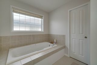 Photo 19: 1205 ORMSBY Lane in Edmonton: Zone 20 House for sale : MLS®# E4173915