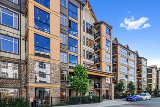 """Photo 19: 312 8157 207 Street in Langley: Willoughby Heights Condo for sale in """"Yorkson Creek (Parkside 2)"""" : MLS®# R2473454"""