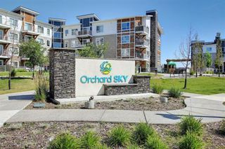Main Photo: 7306 302 Skyview Ranch Drive NE in Calgary: Skyview Ranch Apartment for sale : MLS®# A1051613