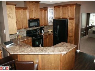 """Photo 5: 34807 1ST Avenue in Abbotsford: Sumas Mountain House for sale in """"HUNTINGDON"""" : MLS®# F1108749"""