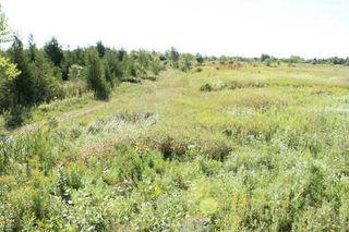 Photo 8: 172 Glenarm Road in Kawartha Lakes: Rural Eldon Property for sale : MLS®# X3017190