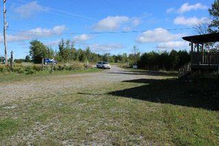 Photo 2: 172 Glenarm Road in Kawartha Lakes: Rural Eldon Property for sale : MLS®# X3017190