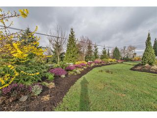 Photo 19: 778 SUMAS Way in Abbotsford: Central Abbotsford House for sale : MLS®# F1433210