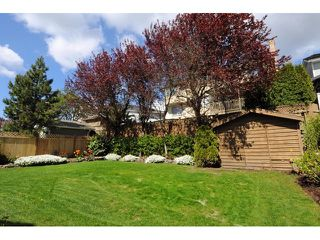 Photo 19: 2417 COLONIAL Drive in Port Coquitlam: Citadel PQ House for sale : MLS®# V1116760