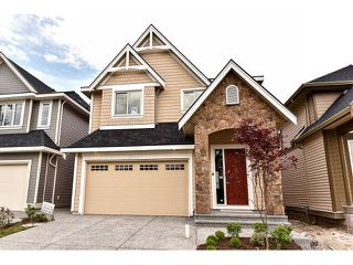 Photo 1: 20955 80A Avenue in Langley: Willoughby Heights House for sale : MLS®# F1438496