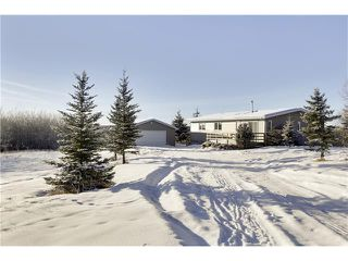 Photo 19: Springbank Calgary | Sold By Calgary Luxury Realtor Steven Hill | Calgary Sotheby's
