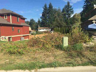 Main Photo: 65977 OGILVIEW Drive in Hope: Hope Kawkawa Lake Home for sale : MLS®# R2108849