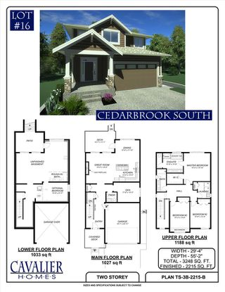 """Main Photo: 13017 237A Street in Maple Ridge: Silver Valley House for sale in """"CEDARBROOK SOUTH"""" : MLS®# R2160704"""